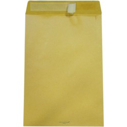 500 sacchi monodex 23x33cm colore avana