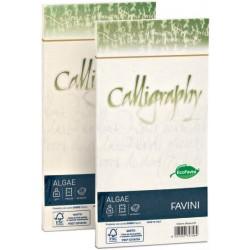 Calligraphy - algae 11 x 22 (25 buste) colore bianco - la carta shiro alga richiama un concetto profondo di ecologia che oltre a recuperare le alghe della laguna di venezia (ben visibili nel foglio) unisce l'utilizzo di cellulose certificate fsc - 1pacco grammatura 90gr