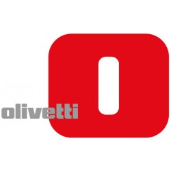 Olivetti b1324 toner magenta colore magenta